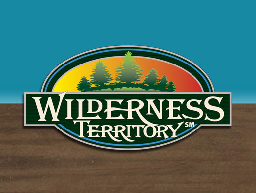 Wilderness Resort Coupons