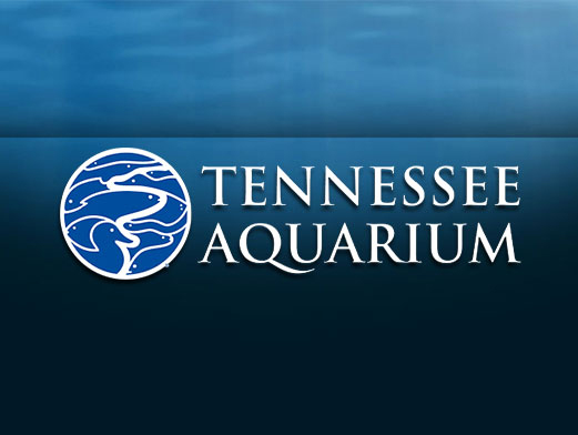 tennessee aquarium printable coupons tennessee aquarium back coupons amp promo codes 25068